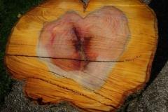 Herz im Baum #2