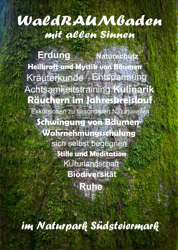 WaldRaumbaden mit allen Sinnen